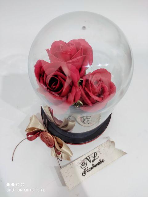 рози-под-купол